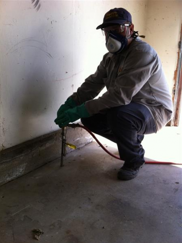 Ant Removal Yuba City CA - Parish - 4
